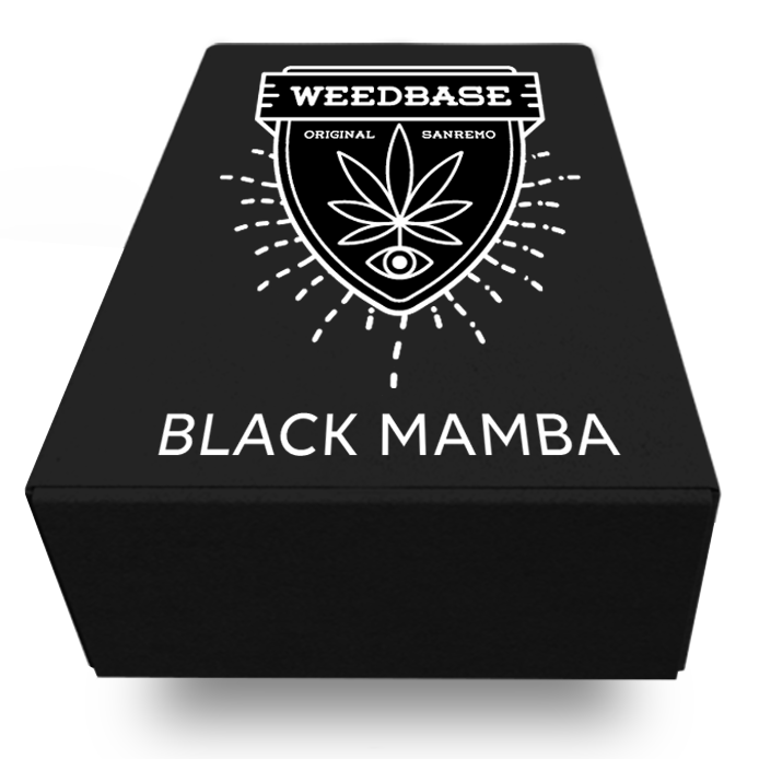 //www.weedbase.club/wp-content/uploads/2019/11/BLACK.png