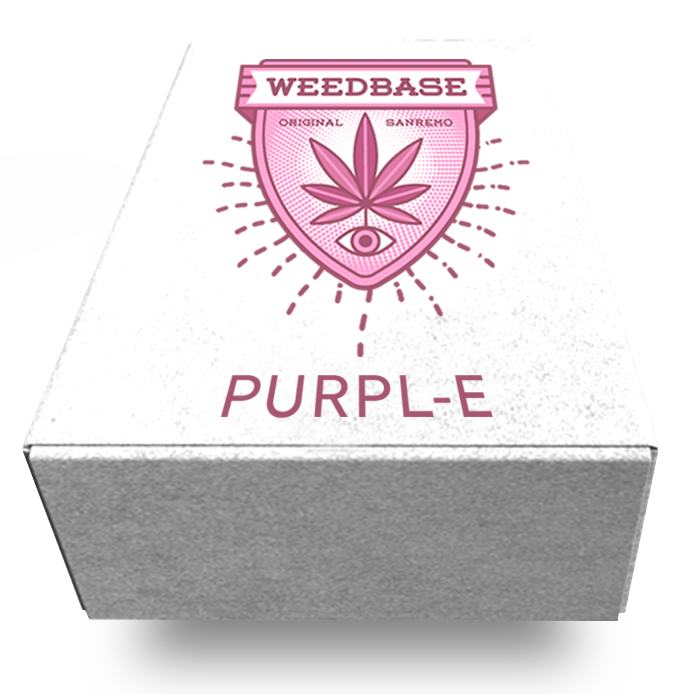 //www.weedbase.club/wp-content/uploads/2019/11/PURPLE.png